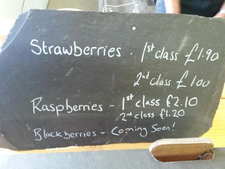 Blackboard prices