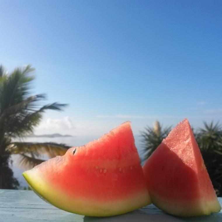 watermelon paradise
